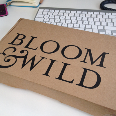 bloom-box