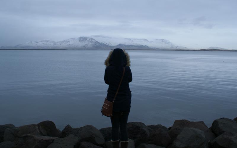 Overlooking Reykjavik Bay